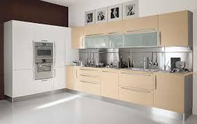 modern wood kitchen cabinets trellischicago