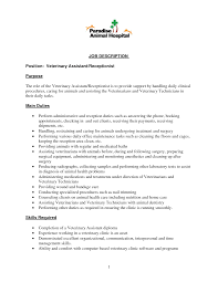 cv mission statement examples   resume branding statement examples
