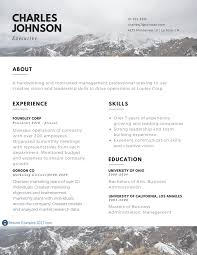 www resume examples executive resume examples to follow resume examples 2017 best executive resume examples