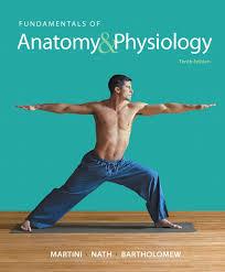 Anatomy And Physiology Chapter 1 Review Answers Martini Nath U0026 Bartholomew Fundamentals Of Anatomy U0026 Physiology