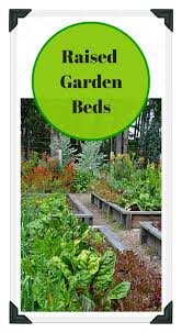 Planning A Raised Bed Vegetable Garden by Raised Vegetable Garden Plans And Ideas