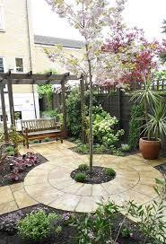 best 25 small garden trees ideas on pinterest london garden