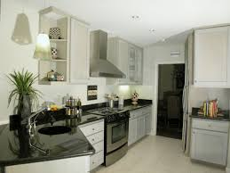 Elegant Kitchen Cabinets Interior Design Paint Kitchen Cabinets With Ventahoods And