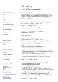 Sample Computer Programmer Resume Entry Level Programmer Resume Example
