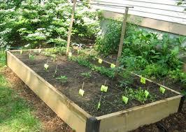 136 best gardens images on pinterest how to garden gardening