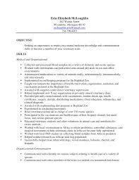 Computer Technician Resume Sample by Hvac Technician Resume Examples Vet Resume Veterinary Technician