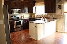 Painting Kitchen Cabinets Espresso Color Ideas For Painting Kitchen Cabinets Pictures Inspirations