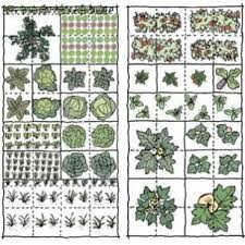 255 best edible garden plans timing u0026 companions images on