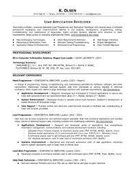 Ecommerce Resume Sample by Large Size Of Curriculum Vitaecosmetology Resume Google Marketing