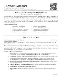 Account manager CV template Resume and Template