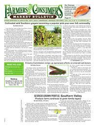 feb 4 2015 market bulletin by georgia market bulletin issuu