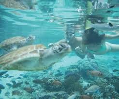 luxurious family stay in tahiti u0026 bora bora e tahiti travel deal