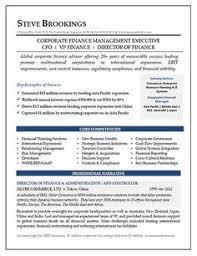 Financial Resume Sample by Ceo Cfo Executive Resume Example Executive Resume And Resume