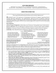 resume for secret service
