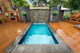 mural of plunge pool cost estimation swimming pool pinterest