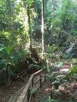 Tirimbina: Saraquipi Rainforest | Costa Rica Adventures