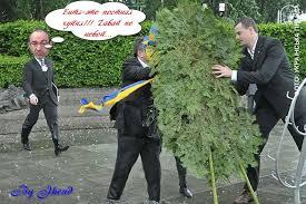 Заседание Европарламента, на котором говорят об Украине, приостановлено - стало плохо депутату - Цензор.НЕТ 1172