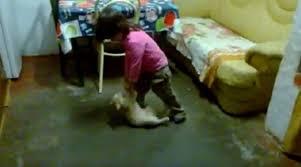 Mulher que filmou filha maltratando gato admite maus-tratos - ANDA ...