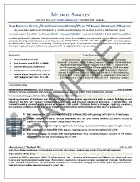 CEO Resume Sample  Chief Executive Officer Resume Sample  Healthcare CEO Resume Sample  CEO