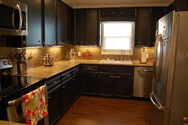 Kitchen Cabinet Decor Ideas by Can You Paint Your Kitchen Cabinets Home Design Ideas