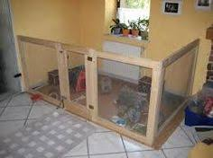 10 playpen rabbit and find image