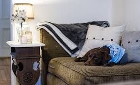 5 best dog couch covers protect your sofa from your pup u0027s paws
