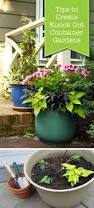123 best container gardening images on pinterest garden planters