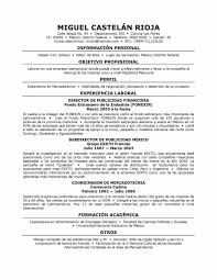 resume summary of qualifications example resume qualifications examples resume qualification summary resume formatting service