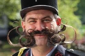 flot skæg