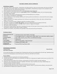 Pdf Resume Builder Professional Resume Examples Pdf