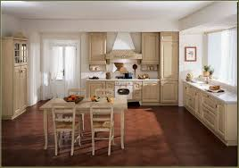 Kitchen Cabinets White Shaker Kitchen Antique White Shaker Kitchen Cabinets Best 2017 Best