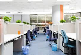 Office Desk Plants by Best Office Plants Good Plants For The Office Environment