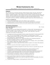 Example Resume  Resume Templates For It Professionals Free Download With Skills Summary And Professional Experience