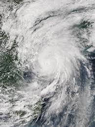 Typhoon Mujigae