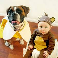 halloween kid images adorable boy and his dog coordinate halloween costumes every year