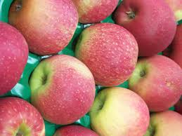 Pink Lady apples packed in