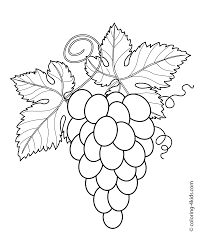flower outlines for coloring coloring page outline of a bunch of