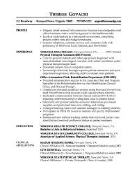 Profile Example For Resume  resume profile statement examples         A simple media sales resume example that you can use to write your own CV