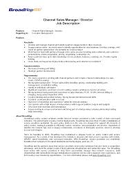 Sample Resume Management Position Resume For Sales Executive Job Resume For Your Job Application