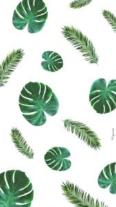 25 best dessin cactus ideas on pinterest illustration cactus