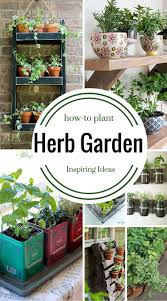 176 best herb salad garden for deck images on pinterest