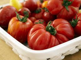 growing tomatoes indoors hgtv