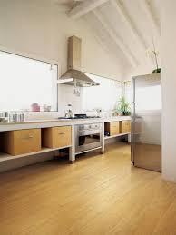 Best Kitchen Flooring Ideas 100 Kitchen Vinyl Flooring Ideas Flooring Vinyl Floor Tiles