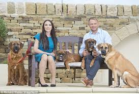 boxer dog uk couple spent 80k cloning two puppies from their beloved dead