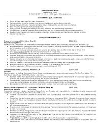 Cv Inclusion by Cv Sample Of Retail Manager