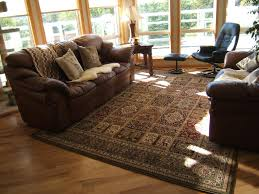 fashionable design ideas brown living room rugs modest 40 living