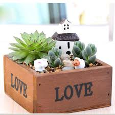 Succulents Pots For Sale by Compare Prices On Rustic Plant Pots Online Shopping Buy Low Price