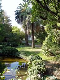Brisbane City Botanic Gardens by Botanical Garden Wikipedia