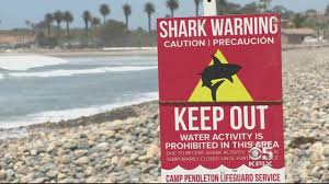 Florida Shark Attack Map by Shark Attack Cbs San Francisco