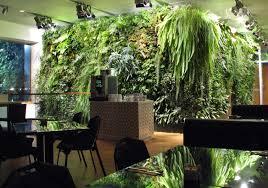 indoor gardens for apartments garden ideas